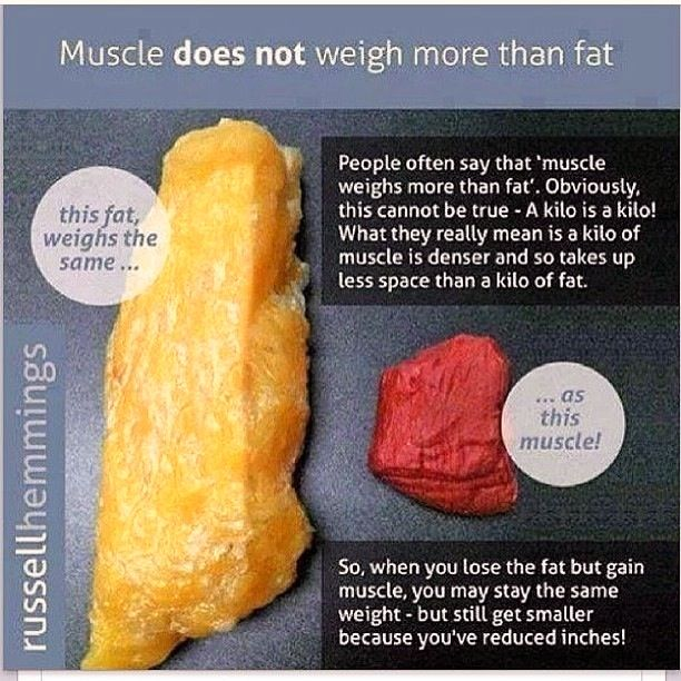 Muscle does not weigh more than fat