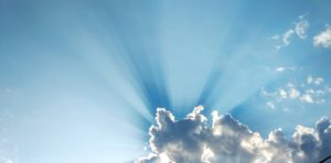 Vitamin D and the Immune System